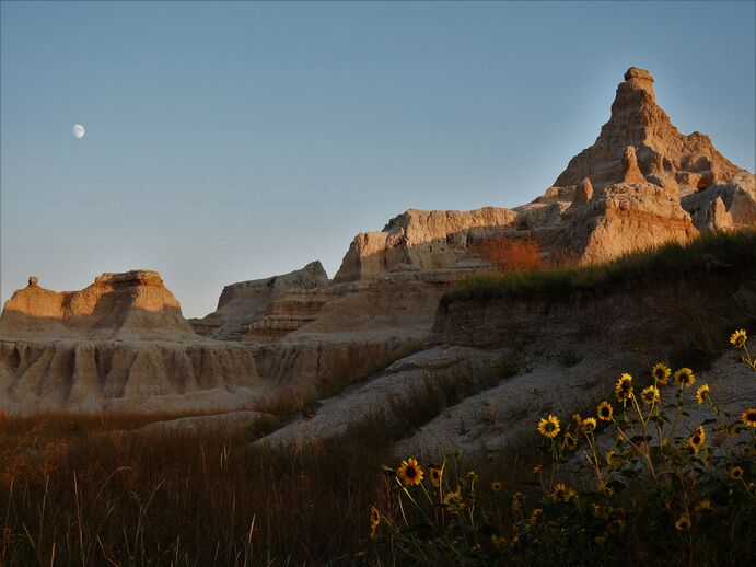 Beauty in the Badlands