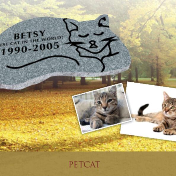 Pet Cat SN