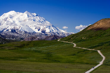 Alaska's Denali National Park hiking tour