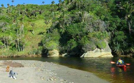 Kayak Sandhill creek
