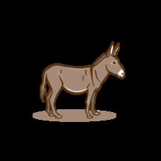 Sponsored donkey at the Wild- & Adventure Park Ferleiten