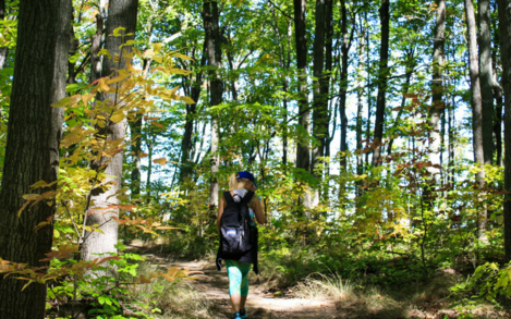 A woman on a forested nature walk.