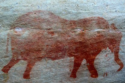 San rock painting of an elephant in the Cederberg