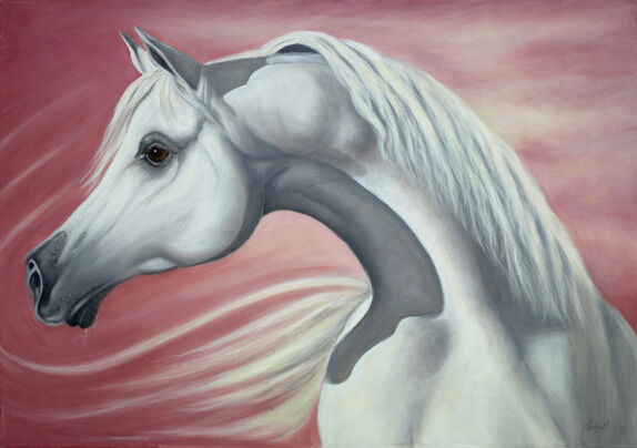 Oil portrait of Arab horse head