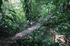 Mainland tour Express - Explore Mesoamerica