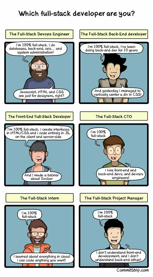 Full-stack developers comic