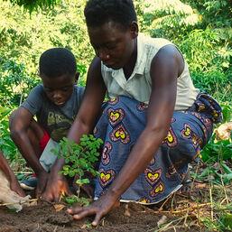 """Susan und ihr Sohn Hope (zu Deutsch: Hoffnung) pflanzen ihren ersten gemeinsamen Baum zusammen. Es ist ein spezieller Baum: Moringabaum. Was an ihm so speziell ist, erfährst du auf unserer Projekteseite """"WUNDERBÄUME""""."""