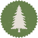 Scotch pine tree icon