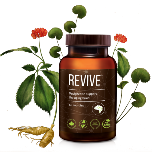 A bottle REVIVE™ Brain Supplement along with drawings of Gotu Kola and Panax Ginseng. Ginseng can improve memory and sleep quality. Gotu Kola can improve cognitive performance.