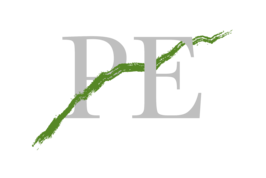 Logo Grey transparent 1