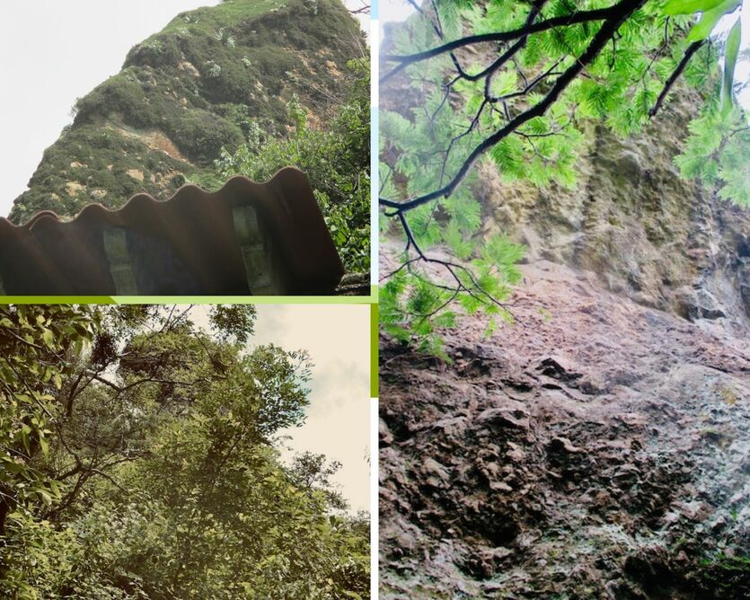 Three photos:  one of rock above a roof top, second a close up showing jagged surface, third is rom a distance, poking through forest vegetation.