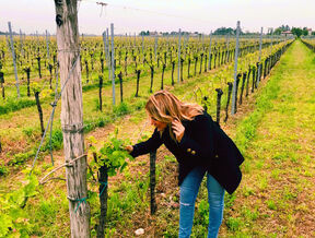 A photo of Simone in a vineyard. Owners of dolomites Wine Import.