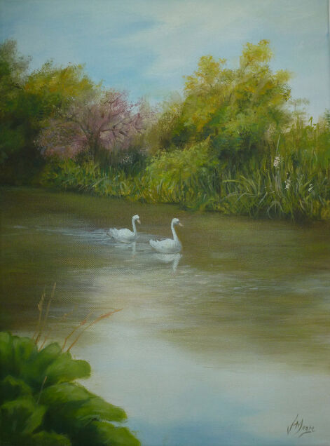 Oil painting of two swans driftng down a lake on the Avon river