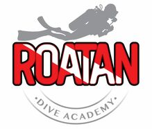 LOGO ROATAN DIVE ACADEMY 2 1 1024x998