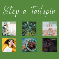 Tailspin 200x200