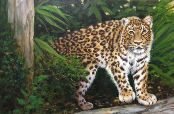 oil painting of leopard stalking in forest