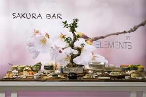 Elements Catering Live Stations / BBQ Menu
