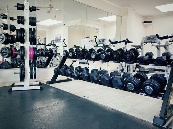 Kurzhanteln Fitness