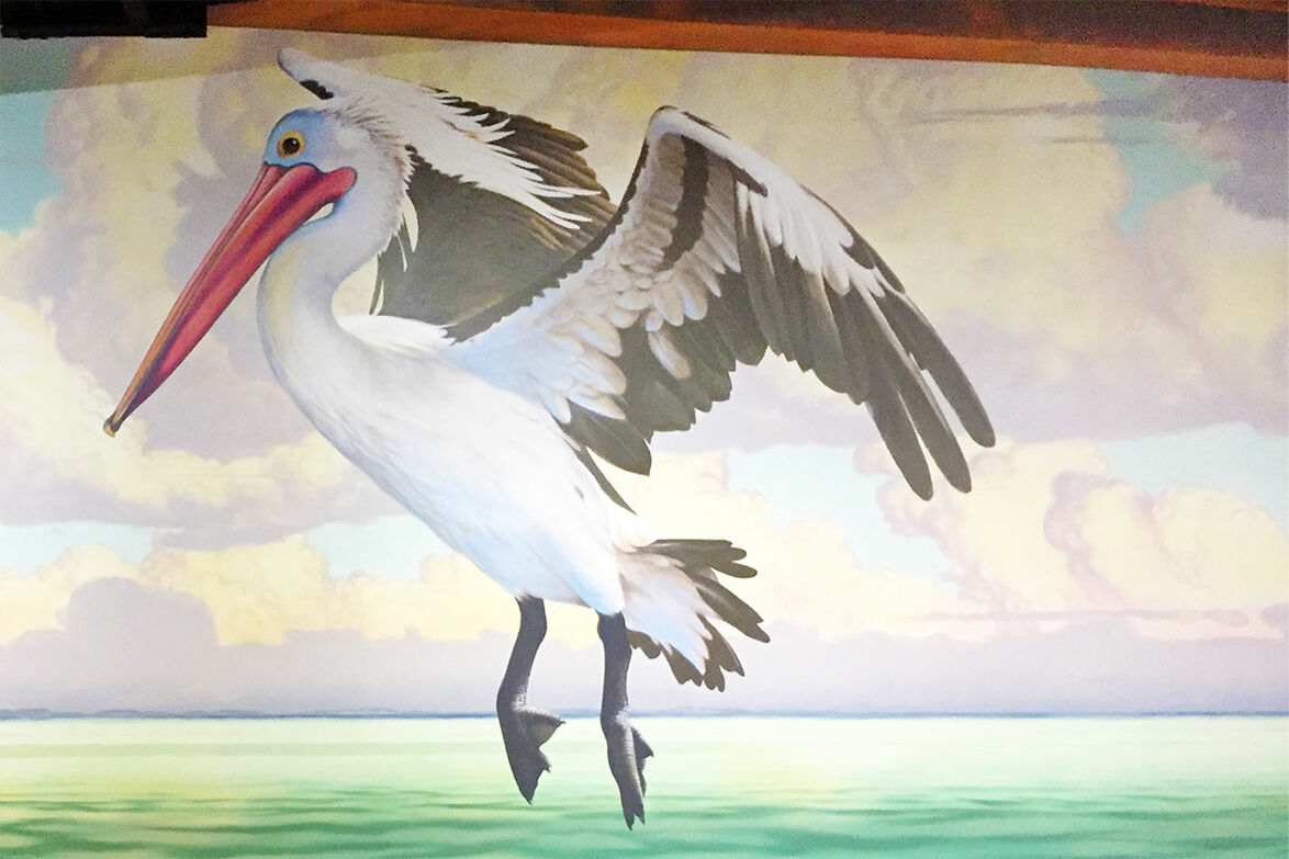Peilcan landing in mural for Ariala Restaurant, Kippa-Ring, painted by Tom Cosic Art