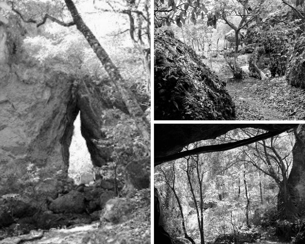 These photos are in black and white. A couple of trees around a very large boulder arrangement that's kissing at the top with a triangular opening space at the bottom. Another shot is taken from inside a cave so that the edges are dark. Outside is the forest.