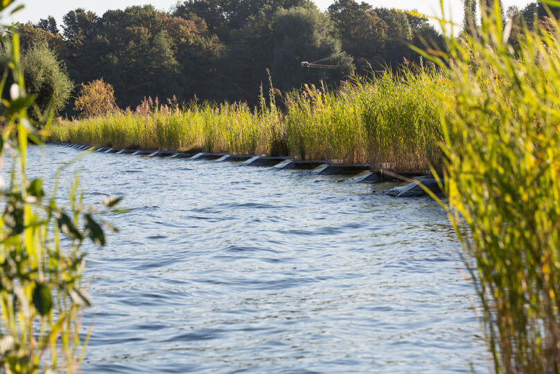 Floating reeds an wavebreakers are an eco-friendly solution for waves and chop.