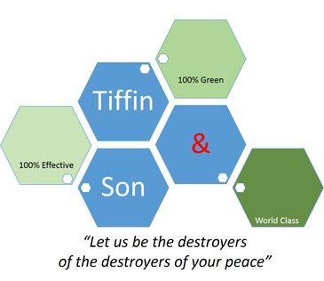 Tiffin and son premium bed bug service.