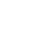 FYS Logo for MM Website