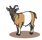 Sponsored goat at the Wild- & Adventure Park Ferleiten