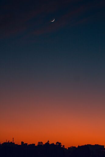 backlit dark dawn 1723637