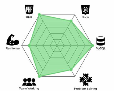 Radar skill competenze programmazione PHP Node.js MySQL