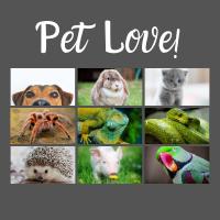 Pet Love 200x200