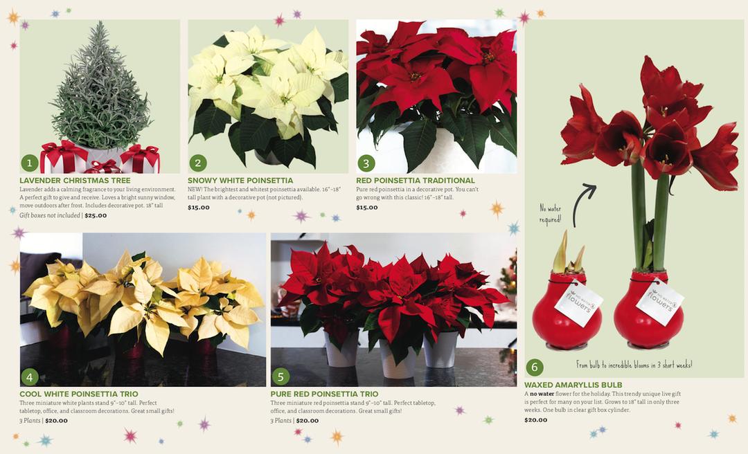 Holiday Catalog 2019 2 e4496