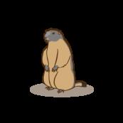 Sponsored marmot at the Wild- & Adventure Park Ferleiten