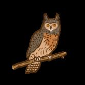 Sponsored eagle owl at the Wild- & Adventure Park Ferleiten