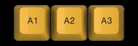A1 A3
