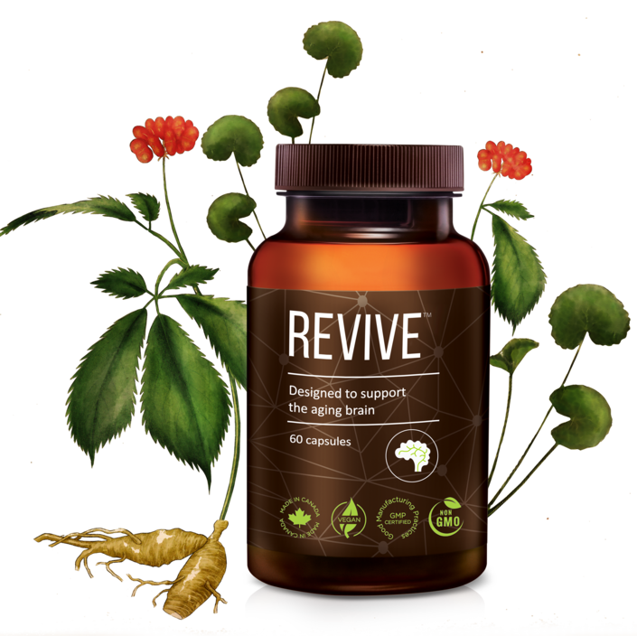 A bottle of REVIVE™ Brain Supplement is pictured along with coloured drawings of gotu kola and panax ginseng. Ginseng can improve memory and sleep quality. Gotu Kola can improve cognitive performance.