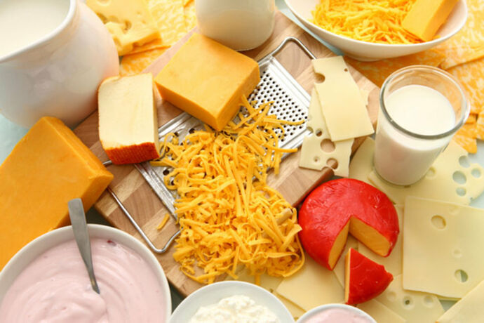 Wholesale milk, cheese, butter, and other dairy products supplier