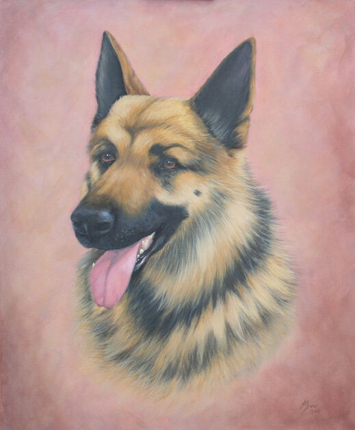 Oil Painting commission of German Shepherd Dog by Jane Indigo Moore