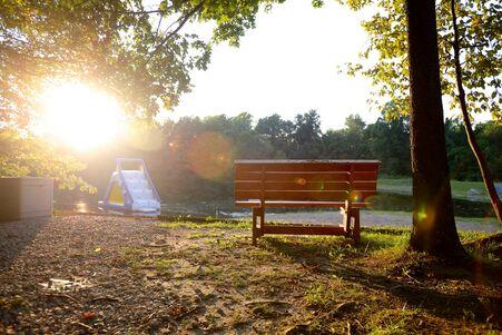 float + bench