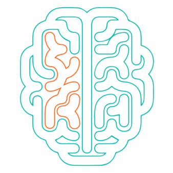 A diagram of a brain treated with EDGE™ is pictured, having been restored to a more natural and healthy state. EDGE™ boosts your brain's natural ability to protect and repair itself from damage,‍‍‍ inflammation and toxin buildup, helping to support your ability to learn, focus and recall.