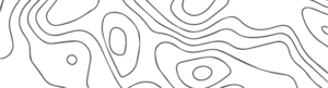LiV2 Grids