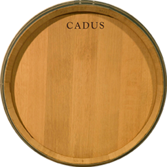 Barrels by Cadus