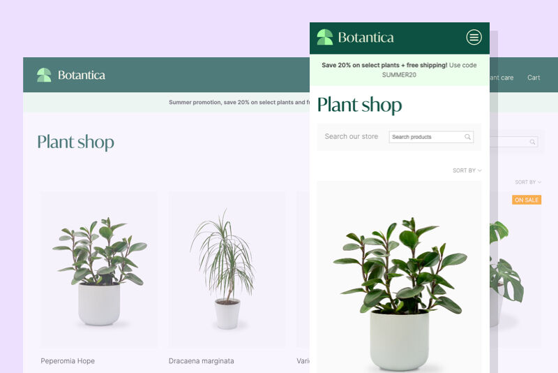 An illustration of an online store selling plants.