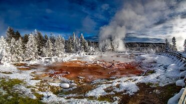 Join a guided tour of Yellowstone Nation Park in winter