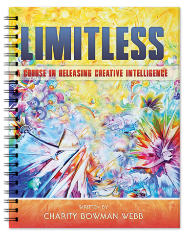 Limitless 3d binder