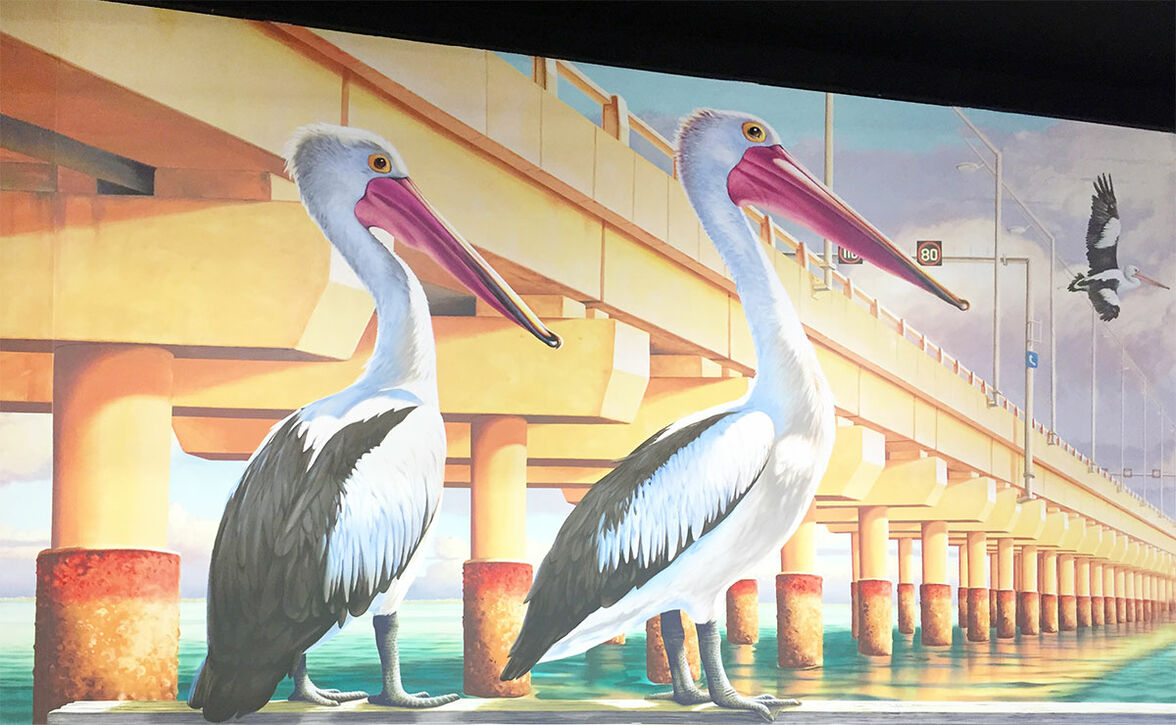 Two pelicans in Kippa-Ring mural at Ariala Restuarant, painted by Tom Cosic Art