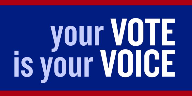 Vote is Voice image