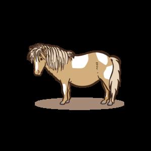 Falabella Pony Zeichenfläche 1