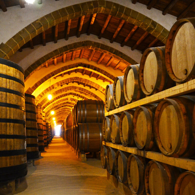 Moscatel Barrels in refill-ready condition