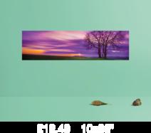 p 10x36 prints